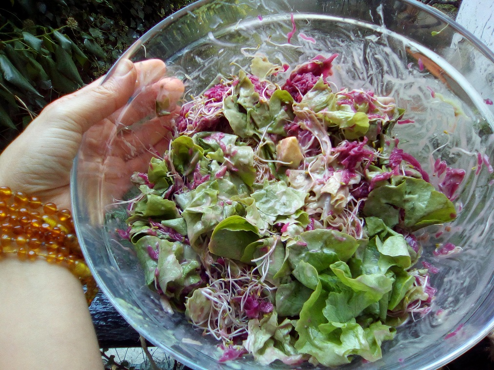 Amazing alfalfa #salad with avocado and cultured red cabbage - #raw #recipe on clairesamuel.com