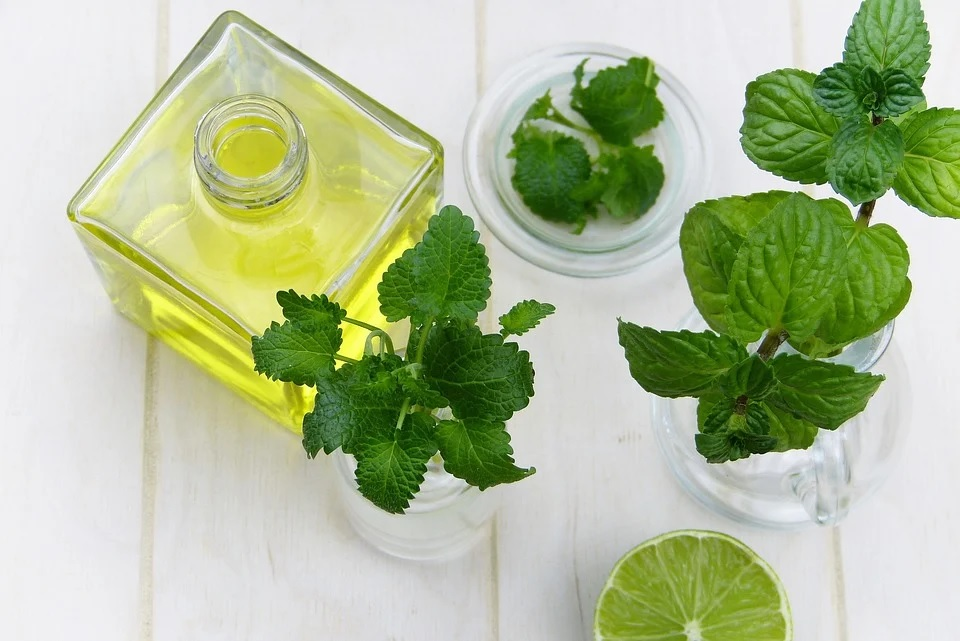 Peppermint essential oil: 3 amazing tips for freshness inside out