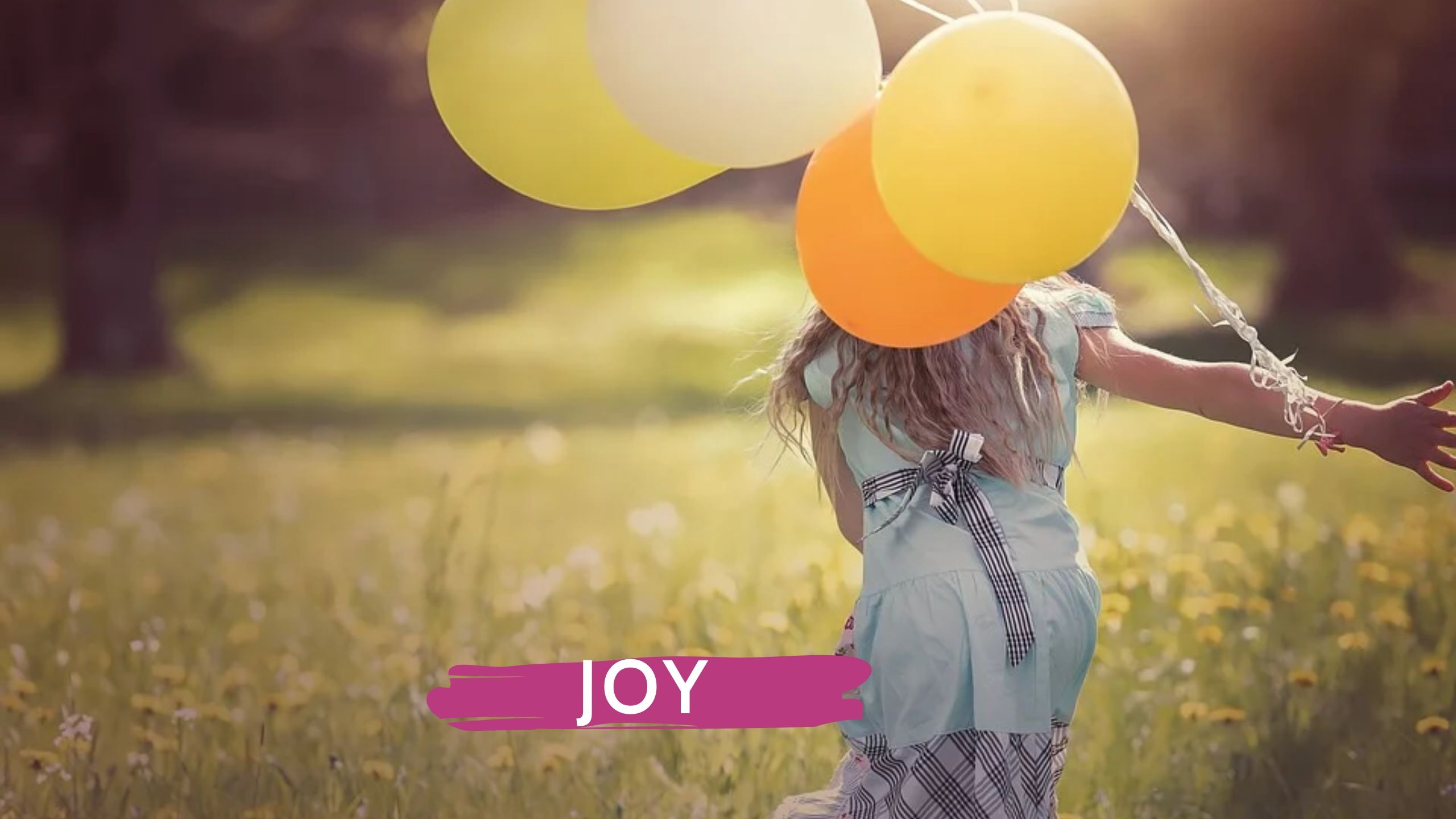 """""""First comes the joy. Then, somehow, beauty and grace appear into our lives."""" - Claire Samuel"""